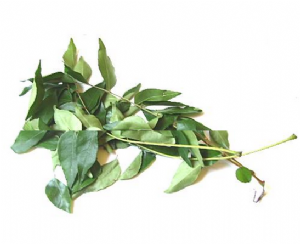 Fresh Curry Leaves (Fresh Curry Leaf) | Buy Online at The Asian Cookshop